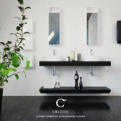 CELCIUS CFC 2017_27